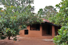 Copy-of-mud-house